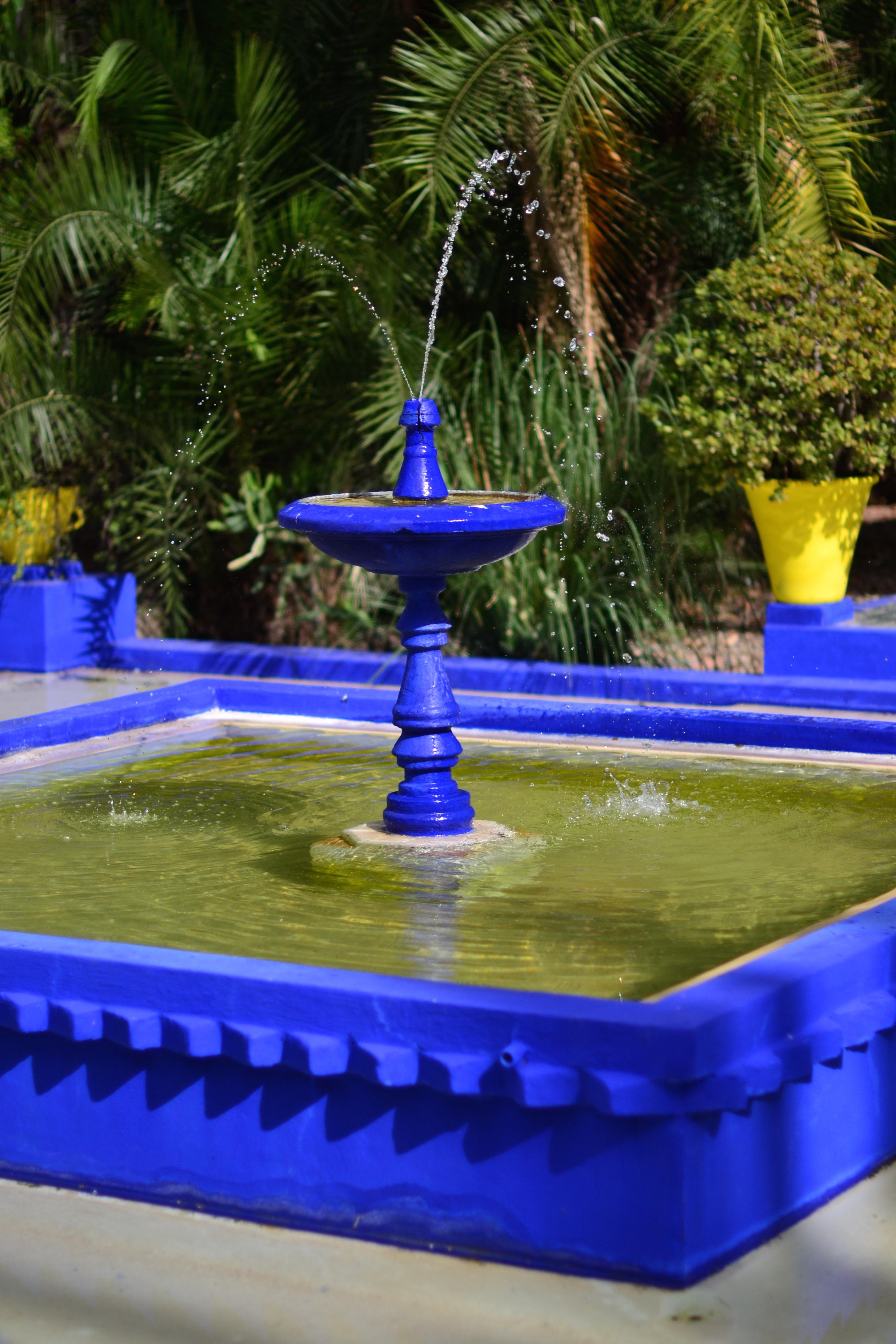 Jardin Majorelle, Morocco, Summer '16